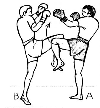 BOXE PIEDS POINGS